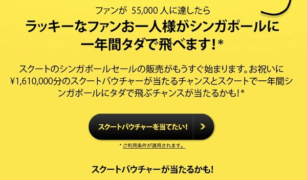 FlyScoot Japan