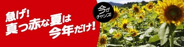 エアアジア 真っ赤な夏は今年だけ!キャンペーンを開始 7月3日〜