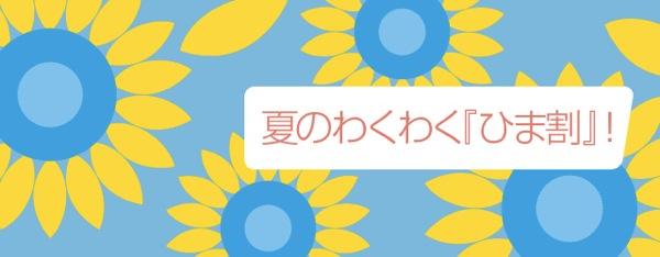 バニラエア 成田 〜 札幌が2,480円の『ひま割』セールを開催!沖縄/奄美/ソウルもセール対象
