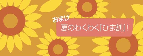 バニラエア 成田 〜 台湾の往復が総額約15,000円になる24時間限定セールを開催!