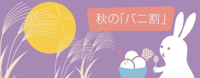 バニラエア 成田 〜 ソウル(仁川)が1,480円/片道になるセール!国内線も対象