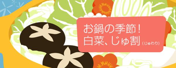 バニラエア:成田 〜 札幌・沖縄・奄美大島の国内線3路線が片道2,980円のセールを開催!