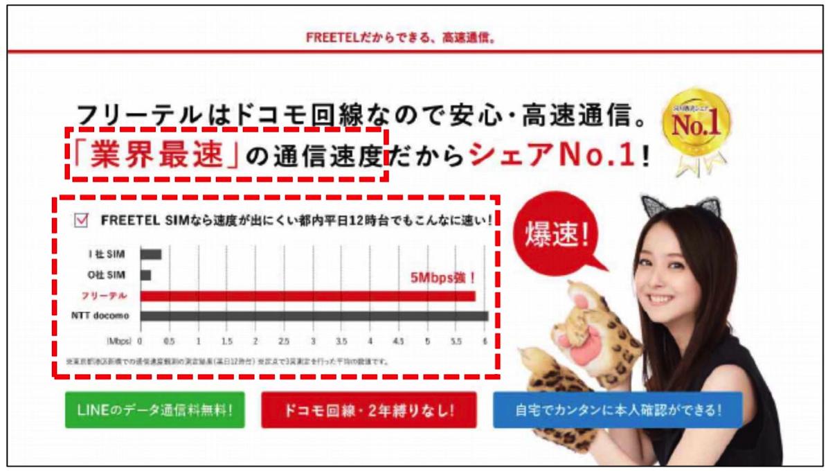 「業界最速」をうたうフリーテル(消費者庁資料より)