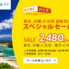 バニラエア:成田↔石垣島と沖縄↔石垣島を7月開設、記念セールで成田↔石垣が片道4,980円、14日(水)14時開始