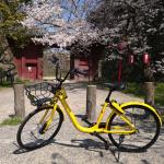 中国発シェアバイク「ofo」、10月末で国内完全撤退。日本語サイトは既に閉鎖