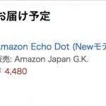 予約購入した「Echo Dot」が届かないので、Prime Nowで購入してみた