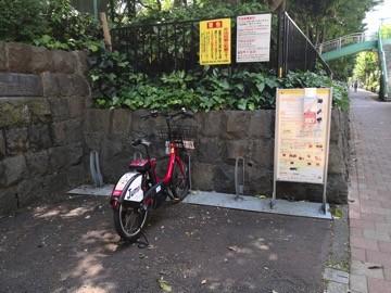 D6-13.新宿中央公園(ジャブジャブ池下)