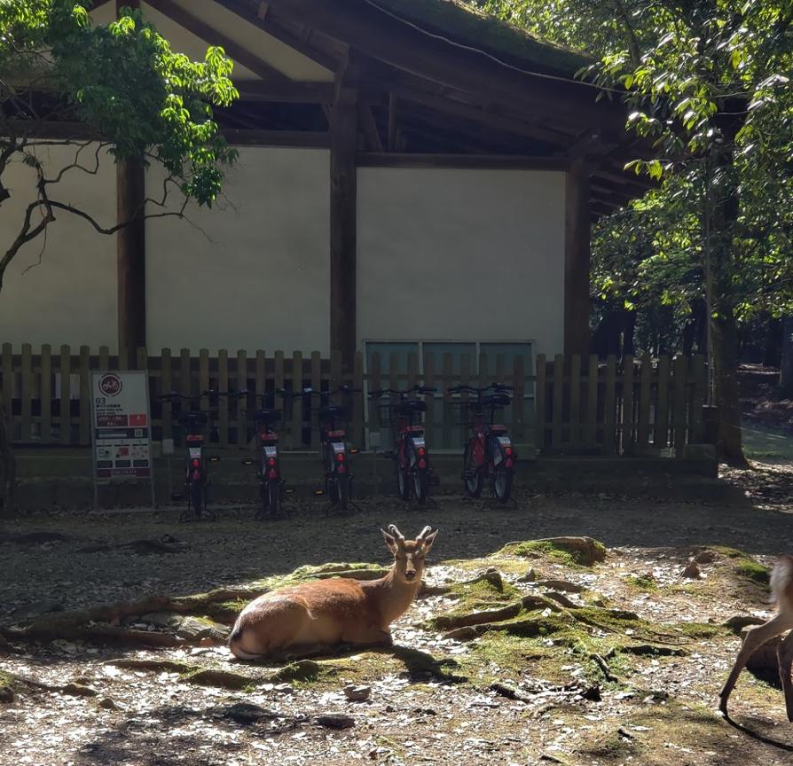 「奈良バイクシェア」のポート(春日大社)