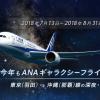 ANA、羽田-那覇の深夜便「ギャラクシーフライト」を2018年夏も運行、片道8,000円台から