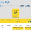 セブ・パシフィック航空:日本-フィリピンが片道100円!2019年1月-9月が対象のセール