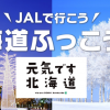 JAL「北海道ふっこう割」、周遊・スキーに使えるパッケージツアーを10月29日(月)10:30発売