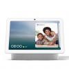 Google Nest Hub Max発売、量販店ポイント還元は1%