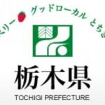 日本旅行、栃木県ふっこう割を1月10日(金)正午発売。県内旅行を1人1泊5,000円割引