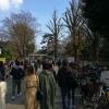 新宿御苑が臨時の無料開放「チケット購入行列での感染を予防」が目的