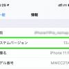 iPhone 11 ProをiOS 13.4.1更新、楽天モバイルのeSIMは利用可能