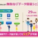 【IIJmio】データ容量シェア機能の仕様・制限メモ