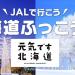 【北海道ふっこう割】JALの北海道ツアーが最大20,000円割引、10月22日(月)14時発売